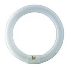 TUB NEON CIRCULAR PHILIPS 32 W